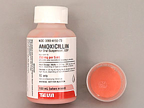 how to write amoxicillin suspension prescription